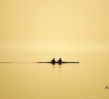 rowing at dusk by Fran E.