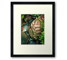 Lennox Bridge Stairs Framed Print