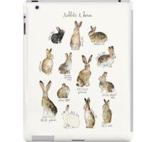 Rabbits & Hares iPad Case/Skin