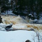 ADIRONDACK STATE PARKWINTER 2010/2011 by linmarie