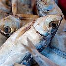 Dried Fish by Gary Chapple