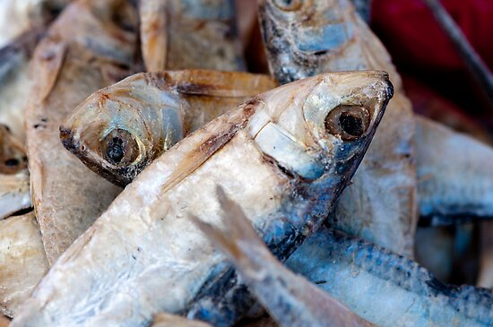 Dried Fish by Gary Chapple