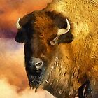 Icon of the Plains by RC deWinter