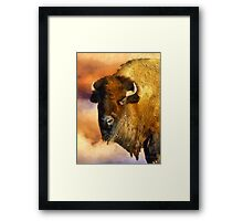 Icon of the Plains Framed Print