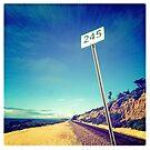 #245 by deepbluwater