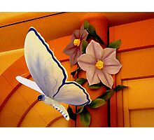 BUTTERFLY of PAPER MACHE Photographic Print