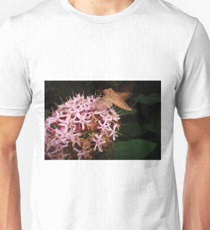 Hummingbird Moth in Clerodendrum T-Shirt