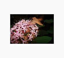 Hummingbird Moth in Clerodendrum T-Shirt