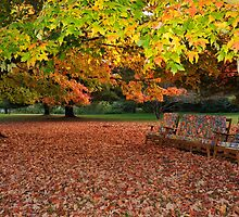 Have a Seat by eleanor p.  labrozzi
