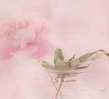 Pink Peony Blossom In Clear Glass Tea Pot  by Sandra Foster