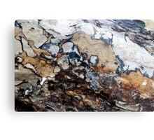 Bark Cartography Metal Print