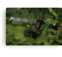 Cute Profile Canvas Print