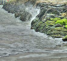 On the rocks by Kim Slater