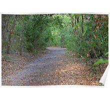 Oak hammock trail Poster