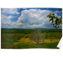 Maine Skyscape Poster