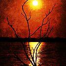 Moon Rising Textured Photo by Lisa Holmgreen