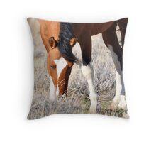 Desert Grazing Throw Pillow