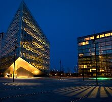 Copenhagen Evening by imagic