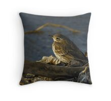 American Pipit at the Lakeshore Throw Pillow