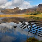 Blea Tarn in the Langdales by SteveBB