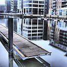 Clarence Dock in Leeds by SteveBB