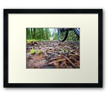 Flying by the Camera Framed Print