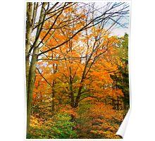 Orange October Poster
