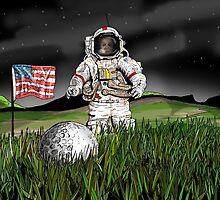 Moon landing by Johan Malm