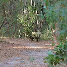 Oak hammock bench by Ben Waggoner