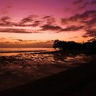 Nudgee Colour by Ladedadeda