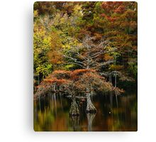 mill pond in the fall Canvas Print