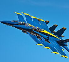 Blue's in formation by jandgcc