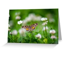 Crescent Butterfly Greeting Card