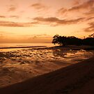 Pre Colour Dawn at Nudgee by Ladedadeda