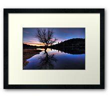 Meet At The Tree Framed Print