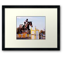 13. HITS Framed Print