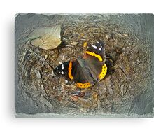 Digital Butterfly - Red Admiral Canvas Print