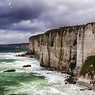 France. Normandy. Cliffs of Etretat. The other side. by vadim19