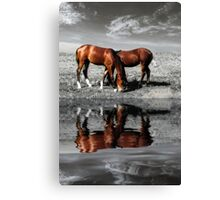 Grazing horses at sunset near water Canvas Print