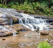 At The Bottom - Katoomba Cascades by jayneeldred