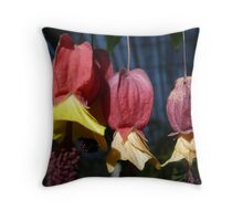 3 Stages of Divine Art Throw Pillow