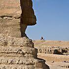 Sphinx Profile by Chris Vincent