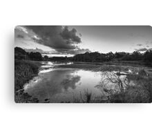 The Mill Pond Canvas Print