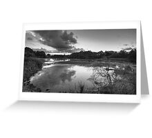 The Mill Pond Greeting Card