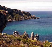 Colourful vegetation on a rugged coastline by georgieboy98