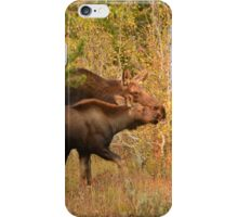 Following My Mother In Her Footsteps iPhone Case/Skin