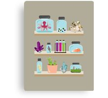 Witchy Shelves Canvas Print
