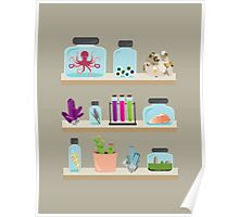 Witchy Shelves Poster