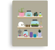 Witch Shelves, The Other Wall Canvas Print