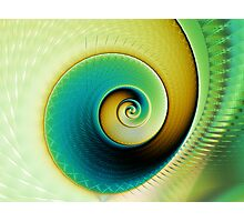 Clean, green fractal spiral Photographic Print